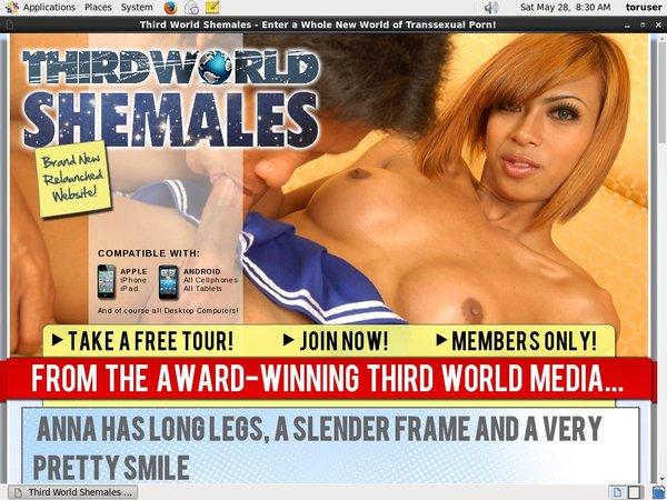 Thirdworldshemales.com Porn Accounts