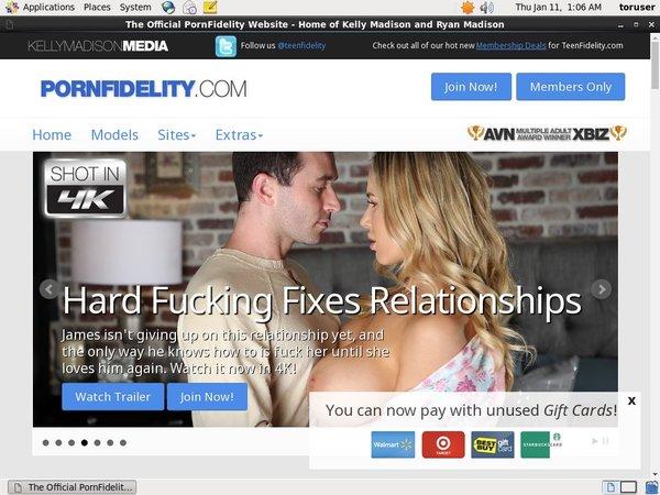 New Porn Fidelity
